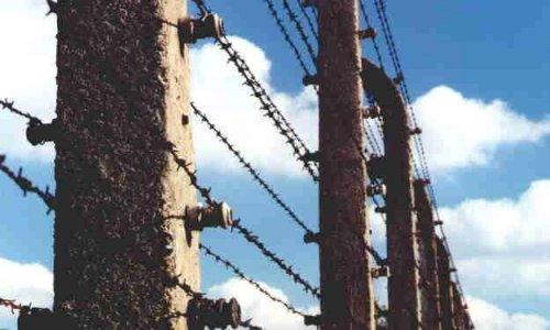 Muzeum Auschwitz - Birkenau